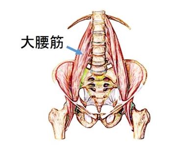 腸腰筋症候群 腰痛 色彩治療 表参道 外苑前